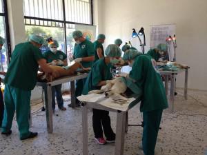 Επιτυχημένη αποστολή της ΕΔΚΕ στην Άμφισσα