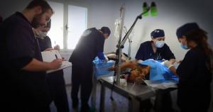 Αποστολή ΕΔΚΕ στην Ιστιαία Β. Εύβοια 2016